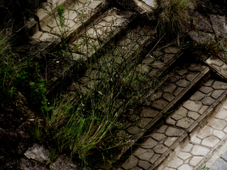 after-rain-weeds-and-stairs-by-Raburadohl.png