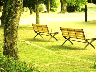 benches-yellow-by-Raburadohl.png