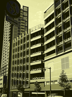 buildings-yellow.png