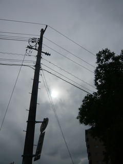 grey-sky-and-the-power-pole-by-Raburadohl.png
